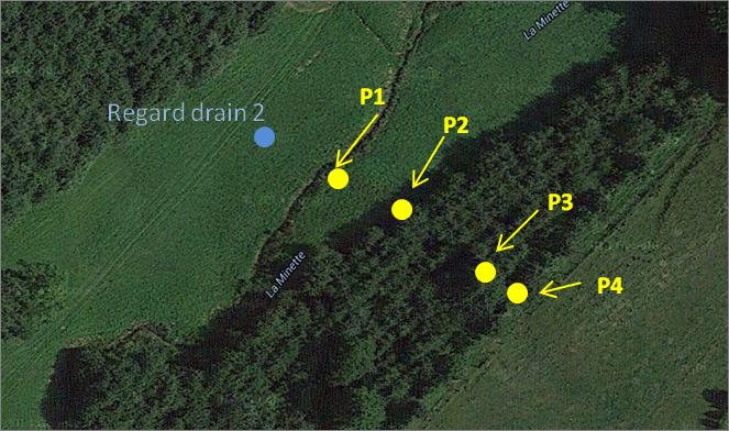 Prélèvements d'eau et mesures de hauteur de nappe selon un transect perpendiculaire au cours d'eau